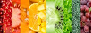 se puede ser vegetariano uruguay montevideo nutricionista rectas alimentacion nutricion