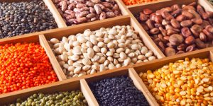 de donde obtenemos las proteinas. Nutricionista Stefanie Heguy nutriveg.uy vegetariana vegano